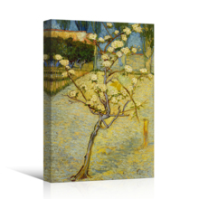 """Small Pear Tree in Blossom by Vincent Van Gogh - Canvas Print Wall Art Famous Oil Painting Reproduction - 12"""" x 18"""""""