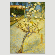 "Small Pear Tree in Blossom by Vincent Van Gogh - Canvas Print Wall Art Famous Oil Painting Reproduction - 16"" x 24"""