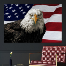 America the Brave - Canvas Art