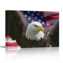 American Pride on Single Canvas - Canvas Art