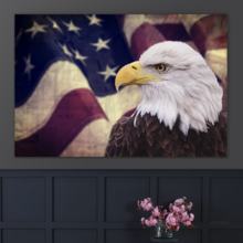 Land of the Free - Canvas Art