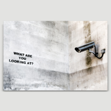 Surveillance What Are You Looking At by Banksy