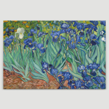 Unbelievable Artistry, Made With Love, Irises by Vincent Van Gogh Oil Painting Reproduction
