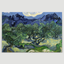 The Olive Trees by Van Gogh - Canvas Print